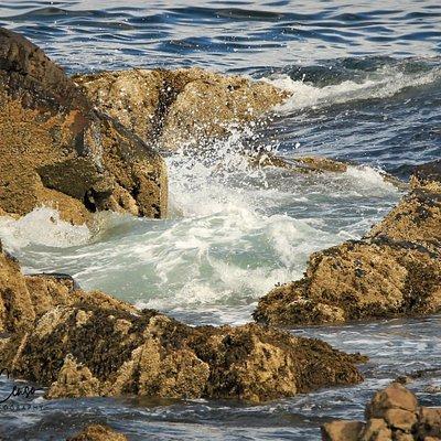 Beautiful waves along the coast