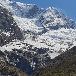 Rob Roy Glacier from teh Upper Lookout