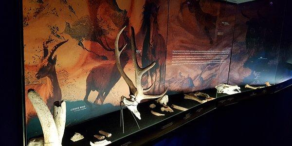 Sala I de la exposición Rupestre. Los primeros Santuarios que evoca a la Cueva de Altamira