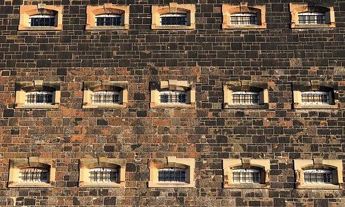 D Block cells