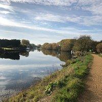 Taken on a beautiful autumn day during a walk on Penton hook island