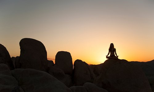 We offer Yoga, Hiking, and Meditation in the serenity of Joshua Tree National Park.