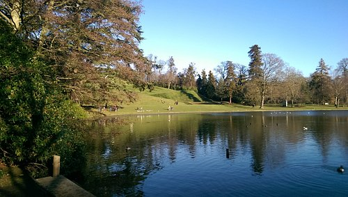 Claremont gardens on a sunny winter day