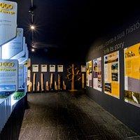 Exposição | Exhibition