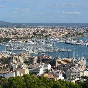 Die Aussicht auf den Hafen und die Stadt entschädigt für jegliche Strapazen