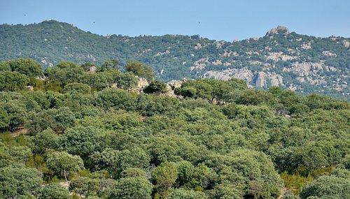 Hoyo de Manzanares se encuentra incluido dentro del Parque Regional de la Cuenca Alta del Manzanares. Gracias a la armonía lograda entre el desarrollo del municipio y la conservación del medio natural, también forma parte de la Red Internacional de Reservas de la Biosfera y está incluido en la Red Natura 2000 como Zona de Especial Conservación (ZEC).