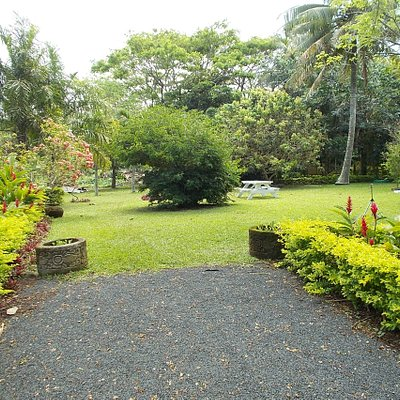 A small clearing area (with a neat lawn) inside the Garden