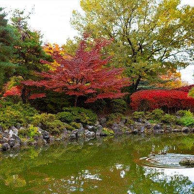 色彩豊かなあがたの森公園