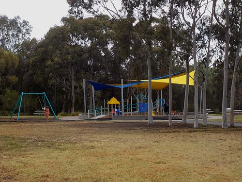 Playground and tall trees