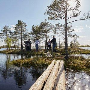 Travelling to Yelnya bog: http://walktofolk.com/portfolio/bogs/