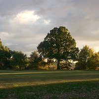 Cheshunt Park, evening scene