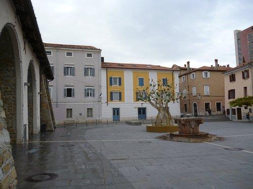 Carpaccio Square with christmas decoration