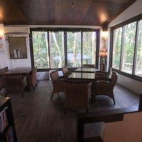 Cherry Blossom Path Cafe