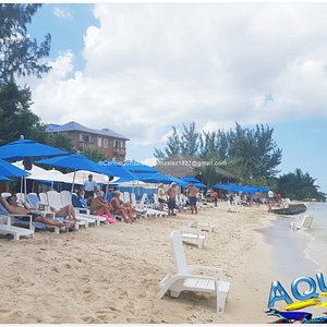 AQUARIUM Beach Cozumel - Day Pass for ONLY $17USD (Entrance Fee + Use of Facilities Included). We are located within 8min taxi ride from your cruise pier, hotel or downtown. Join us! ;)