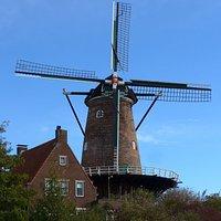 Goes, Molen De Koornbloem' (Mill The Cornflower)