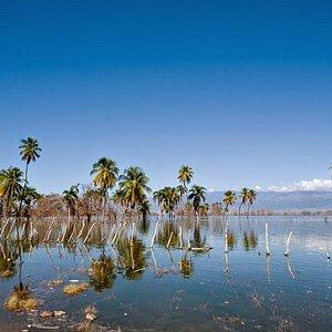lago-enriquillo-dominican.jpg?w=300&h=300&s=1