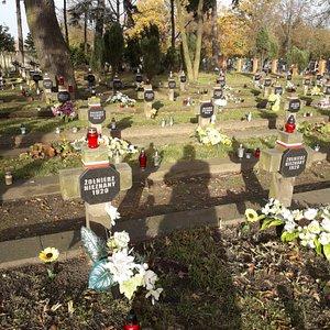 Cmentarz Wojenny 6