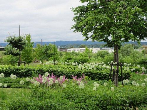 ガーデン風景