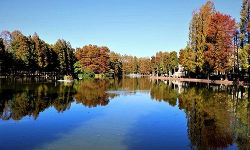 池の奥には噴水があります