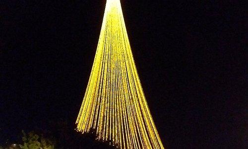 Maior árvore de Natal do estado de Rondônia   Maior árvore de natal do estado de Rondônia
