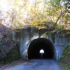 狭いトンネルなのですれ違いには注意が必要です。周囲には綺麗な紅葉と、入山禁止のまつたけ山があります