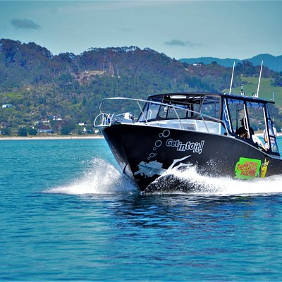 Dive trips on our purpose built dive boat Mystery Machine