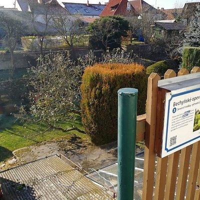 pohled z boční uličky přes soukromé zahrady na zbytky opevnění