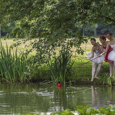tra i 23 ettari di Parco si trova anche il laghetto dei cigni