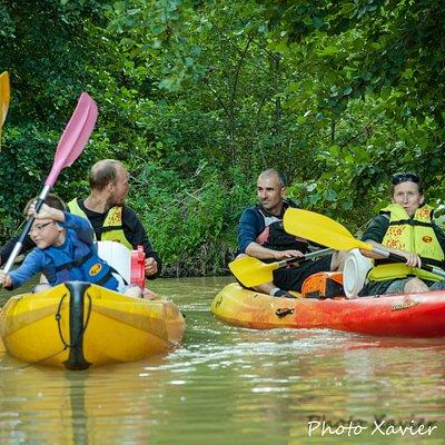 Découvrir la faune de rivière en canoë
