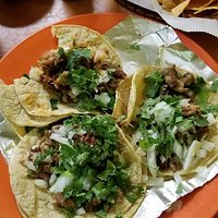 Tacos Carnita