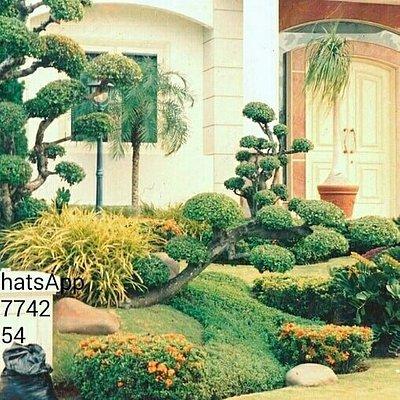 Jasa tukang taman surabaya taman terbuka halaman depan jasataman.co.id