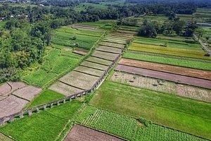 ■mengelola sebuah tempat yang peninggalan jaman dahulu yaitu saluran irigasi yang sudah tak beroperasi.