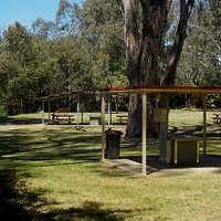 Picnic area with BBQs and shelters