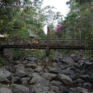 Taman Bougenville Gunung Puntang