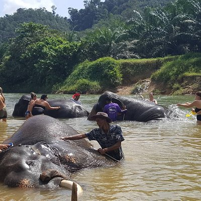 Unseen Khaosok Eco Tour.