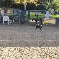 One of the best fenced in dog parks we have ever seen.