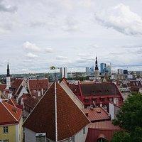 Vista sobre os telhados de Tallinn.