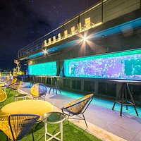 The first and only jellyfish rooftop bar in the country
