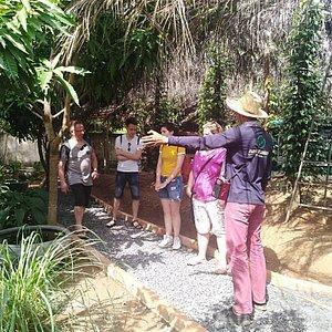 Paradise Gardens Kampot Tours