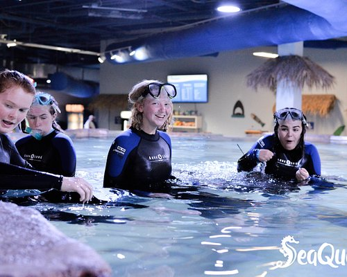 Grab your friends! Snorkeling with the Stingrays is blast.