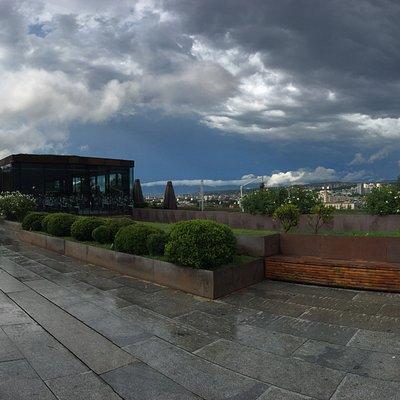 Площадь Революции роз