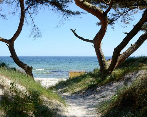 Mellan sanddynorna skymtar havet