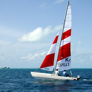 Embark on a catamaran and experience sailing at it's best!