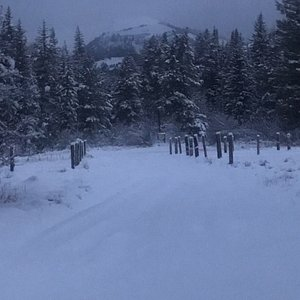 Dog Creek Trail