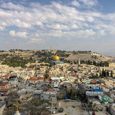 Jonathan Lipnick - Jerusalem Private Tours