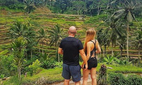Bali Rice Terrace Tours
