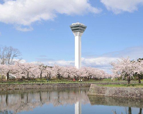 桜の季節の五稜郭タワー(4月下旬〜5月上旬)