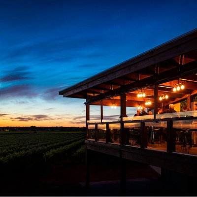 A great place to enjoy one of Atze's premium wines and watch the sun set over the 100 year old vineyard.