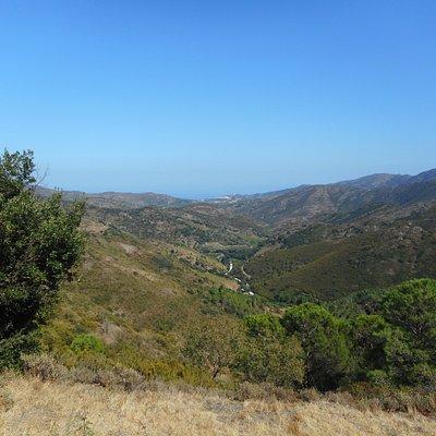 """Col de Banyuls """" Vue panoramique de Banyuls et la Méditerranée """""""