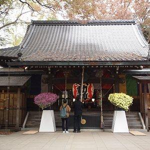 不動堂、菊祭りが開催されていました